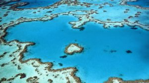 Travel industry GMs help to save the Great Barrier Reef