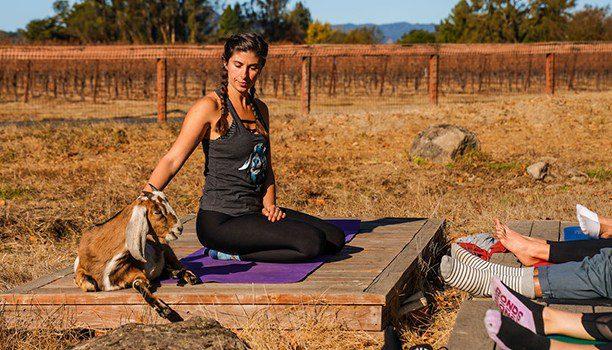 visit california karryon