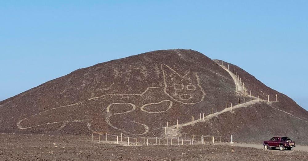 SO RANDOM: Giant Cat Geoglyph Discovered In Peru