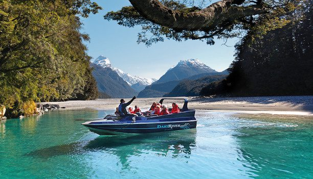 Dreaming New Zealand
