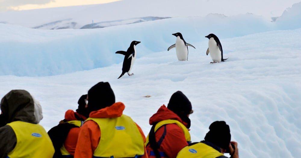 100% fresh air: Aurora Expeditions unveils cruise health protocols